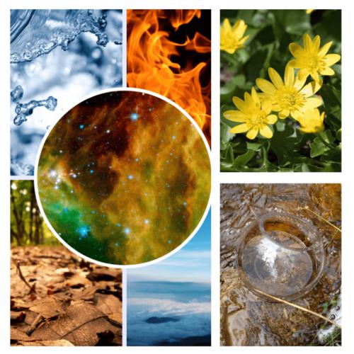 Writer's Gift - flower essence - Rebecca Veryan Millar