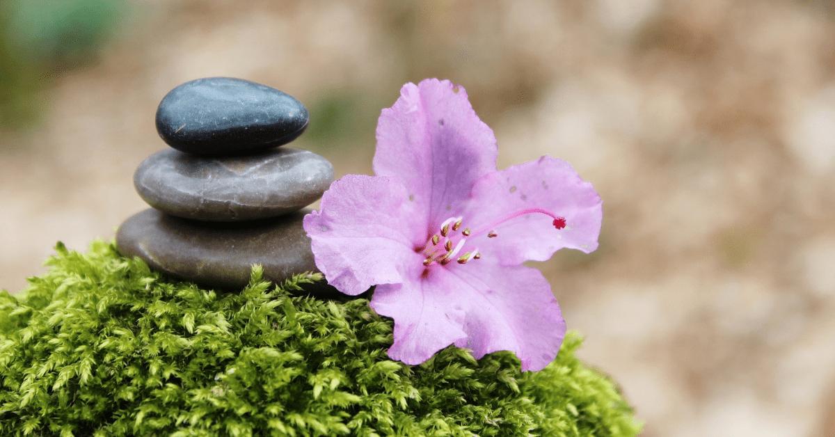 Flower essences for spiritual growth