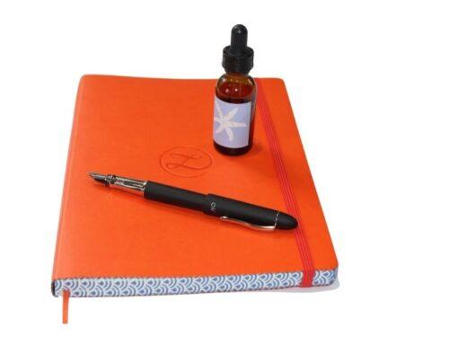 Reflective journalling: a tool for self development