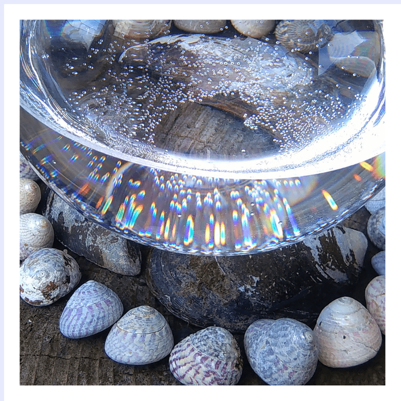 Bowl of Light - flower essence - Rebecca Veryan Millar